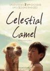 Celestial Camel...